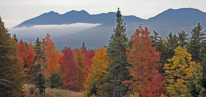 Fall in the Bigelows - the splendor of the Maine outdoors. 